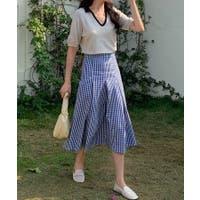 ABITOKYO (アビトーキョー)のスカート/フレアスカート