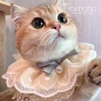 aimoha (アイモハ)のファッション雑貨/ペットグッズ