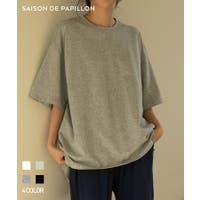 SAISON DE PAPILLON  | DSSW0001690