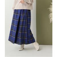 frames RAY CASSIN(フレームスレイカズン)のスカート/ロングスカート・マキシスカート