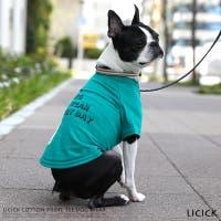 Rocky Monroe(ロッキーモンロー)のファッション雑貨/ペットグッズ