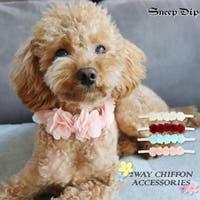 SneepDip(スニープディップ)のファッション雑貨/ペットグッズ