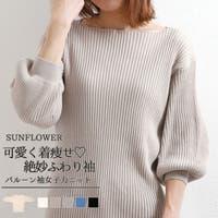 sunflower | SFEW0000767