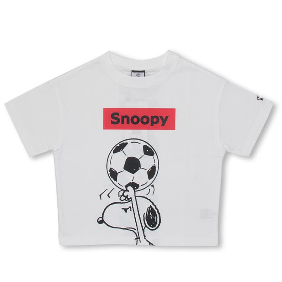 通販限定 スヌーピー スポーツ Tシャツ 4234K ベビードール BABYDOLL 子供服 ベビー キッズ 男の子 女の子 108