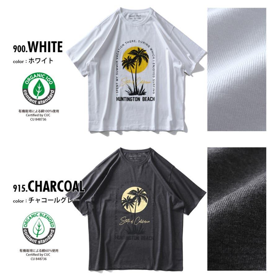 大きいサイズ メンズ DANIEL DODD オーガニック プリント 半袖 Tシャツ HUNTINGTON BEACHazt-200263 2