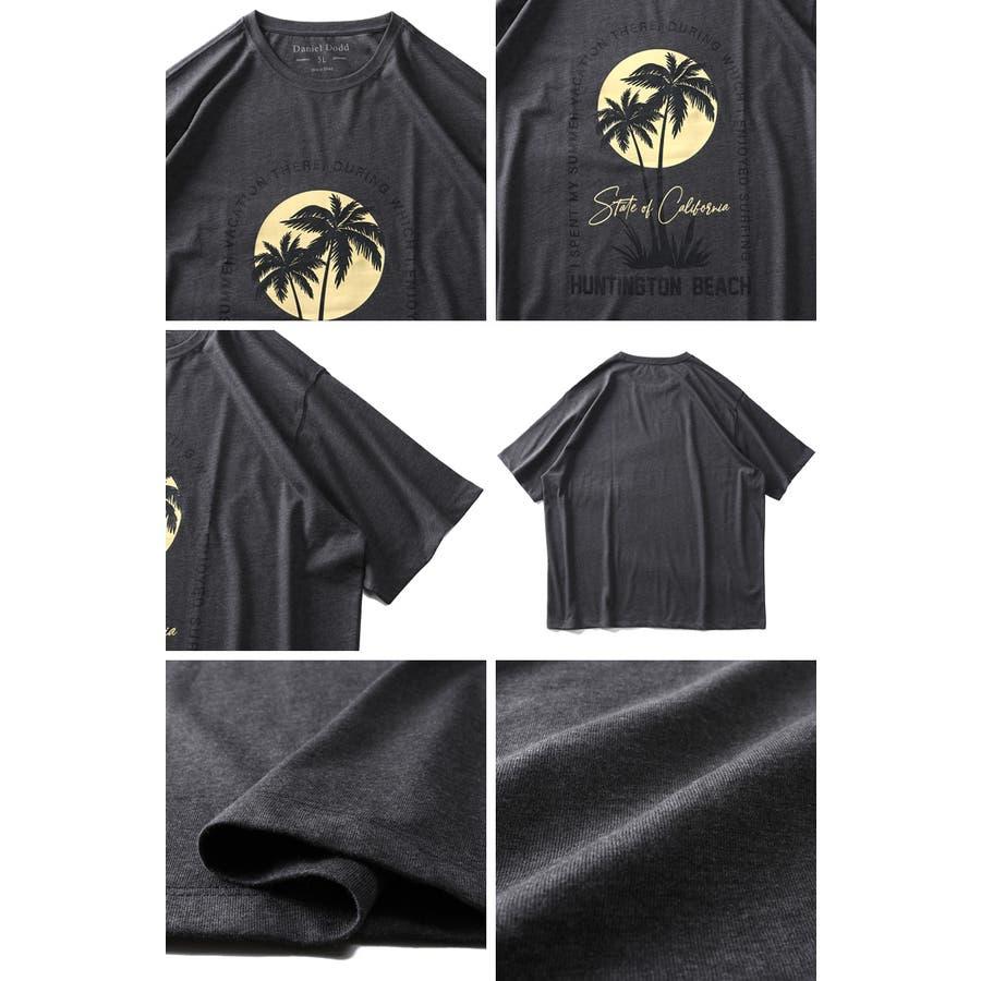 大きいサイズ メンズ DANIEL DODD オーガニック プリント 半袖 Tシャツ HUNTINGTON BEACHazt-200263 3