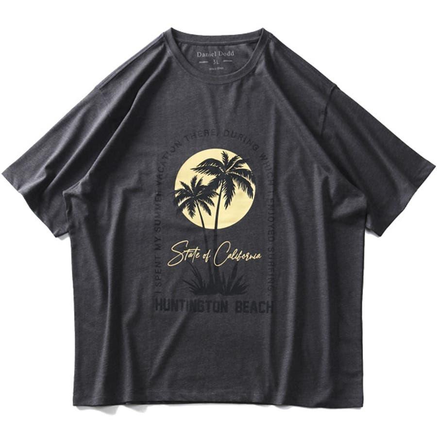 大きいサイズ メンズ DANIEL DODD オーガニック プリント 半袖 Tシャツ HUNTINGTON BEACHazt-200263 5