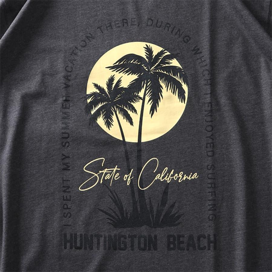 大きいサイズ メンズ DANIEL DODD オーガニック プリント 半袖 Tシャツ HUNTINGTON BEACHazt-200263 6