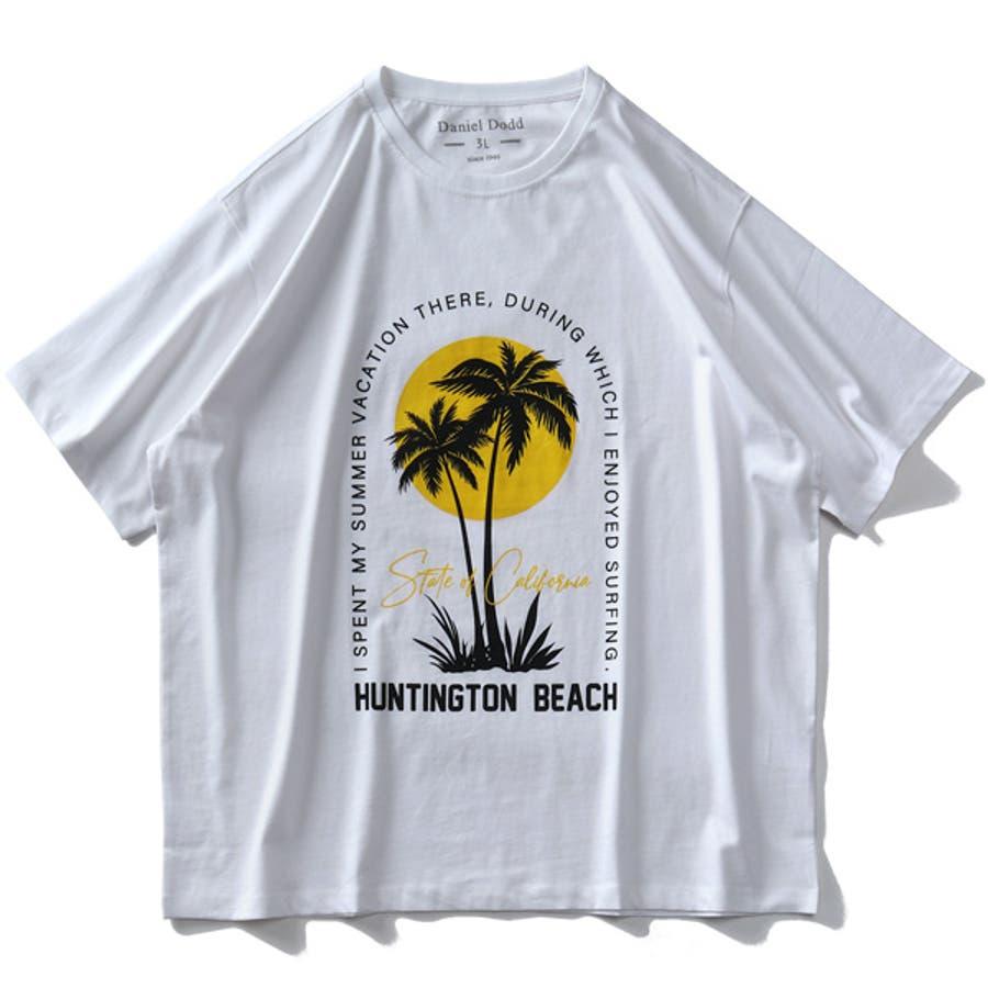 大きいサイズ メンズ DANIEL DODD オーガニック プリント 半袖 Tシャツ HUNTINGTON BEACHazt-200263 7