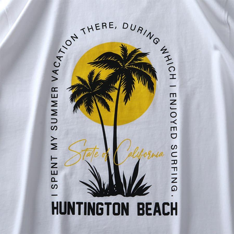 大きいサイズ メンズ DANIEL DODD オーガニック プリント 半袖 Tシャツ HUNTINGTON BEACHazt-200263 8
