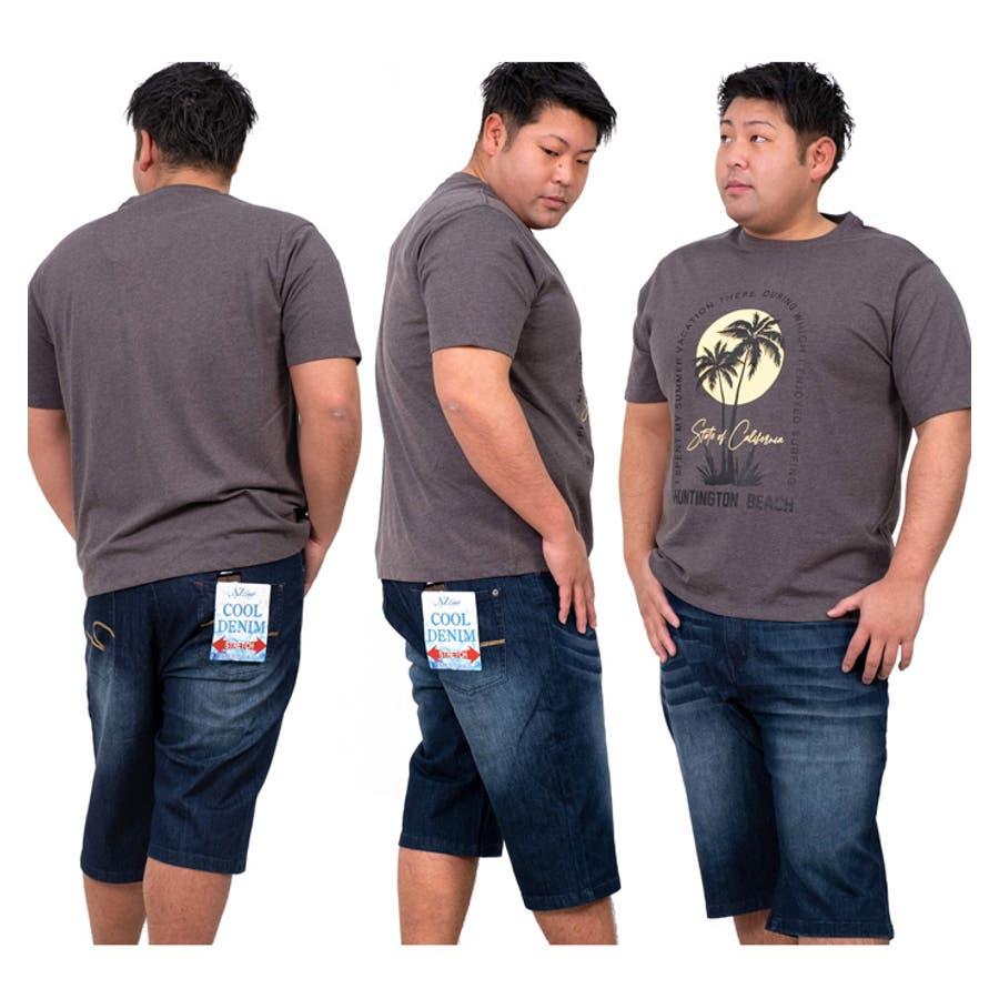 大きいサイズ メンズ DANIEL DODD オーガニック プリント 半袖 Tシャツ HUNTINGTON BEACHazt-200263 4
