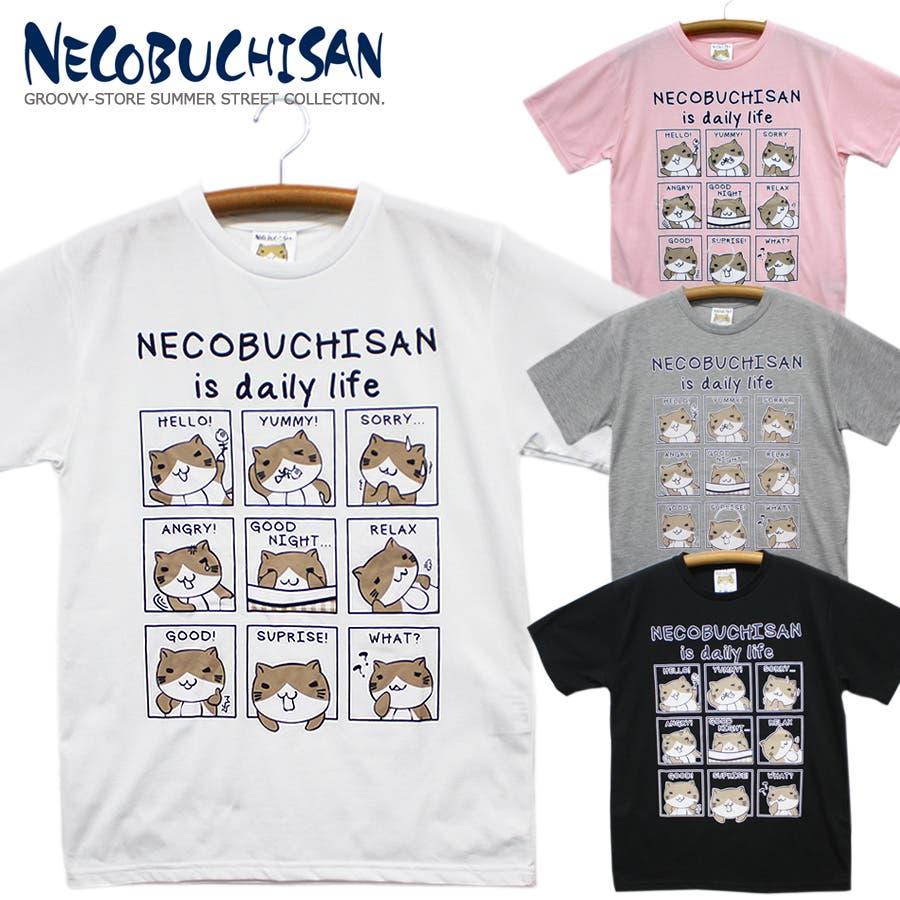 ねこぶちさん 猫渕さん デイリーウィンドー クルーネック 半袖 Tシャツ レディース OK 1