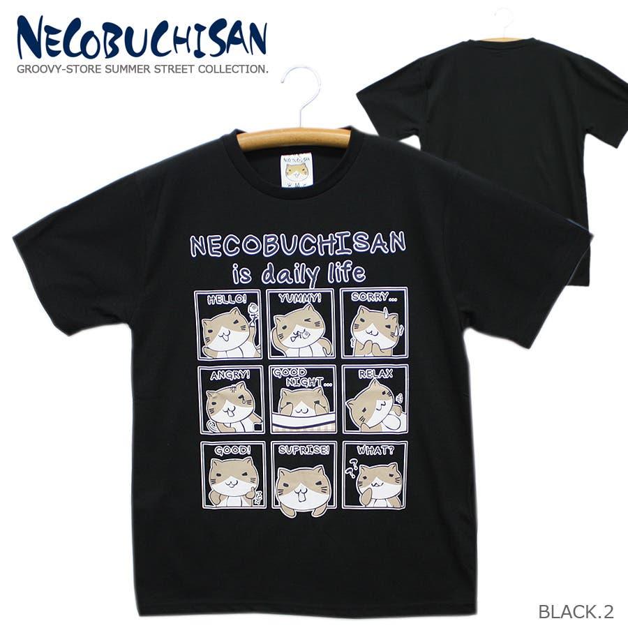 ねこぶちさん 猫渕さん デイリーウィンドー クルーネック 半袖 Tシャツ レディース OK 21