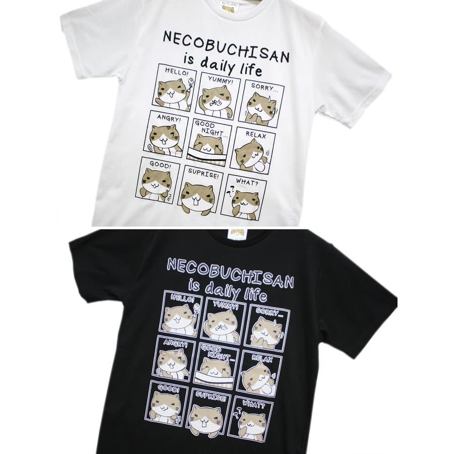 ねこぶちさん 猫渕さん デイリーウィンドー クルーネック 半袖 Tシャツ レディース OK 6