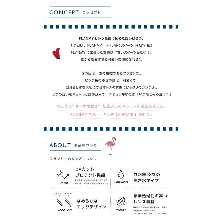 度あり30枚 メープルシフォン フランミー FLANMY DIA:14.5mm 佐々木希 ワンデー カラコン カラーコンタクトレンズ 10