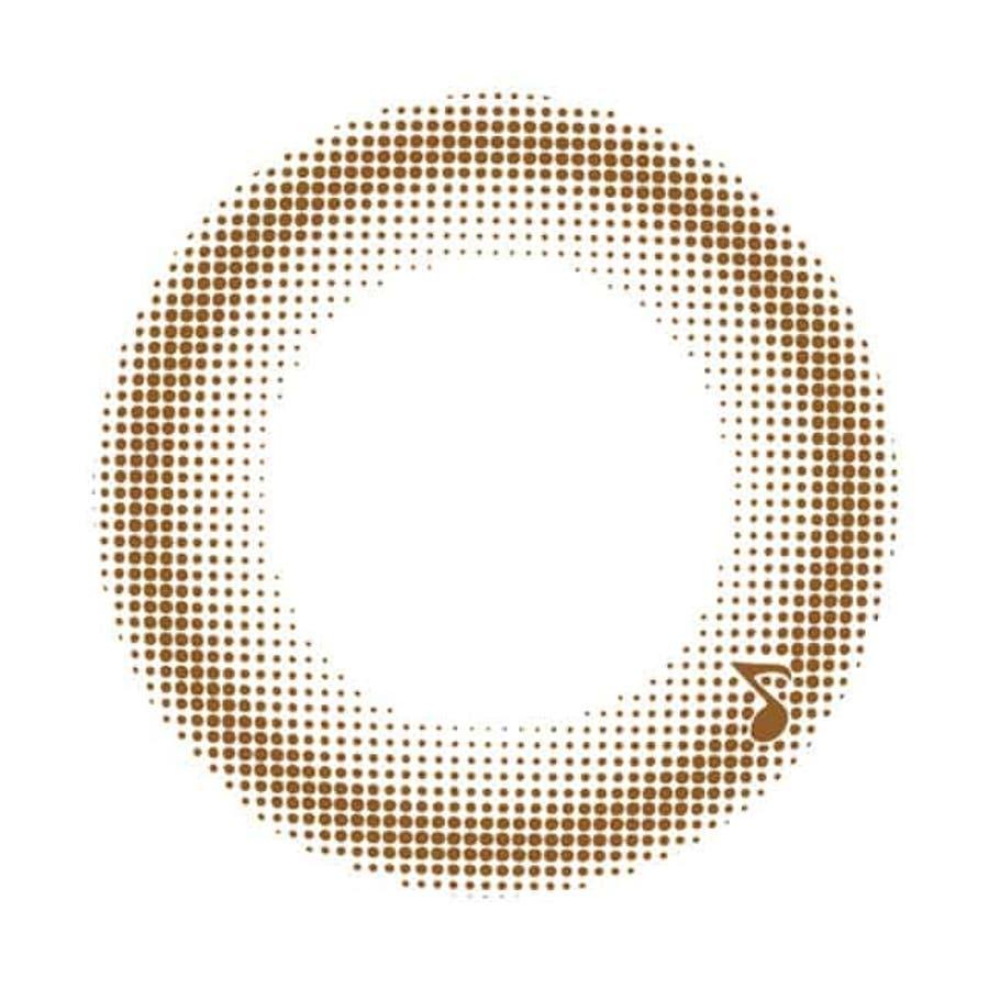 カラコン アレグロ 2ウィーク 【1箱4枚入】度あり 度なし 14.0mm Allegro 2week ナチュラル2week2週間装用 2ウィーク コンタクト 40