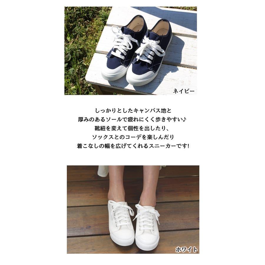 ローカットスニーカー ローカット スニーカー レディース 白 キャンバス 歩きやすい シューズ 靴 疲れない 韓国 韓国ファッション ホワイト カジュアル プチプラ 人気 小さいサイズ 大きいサイズ くつ クツ 運動靴 シンプル 大人カジュアル  3