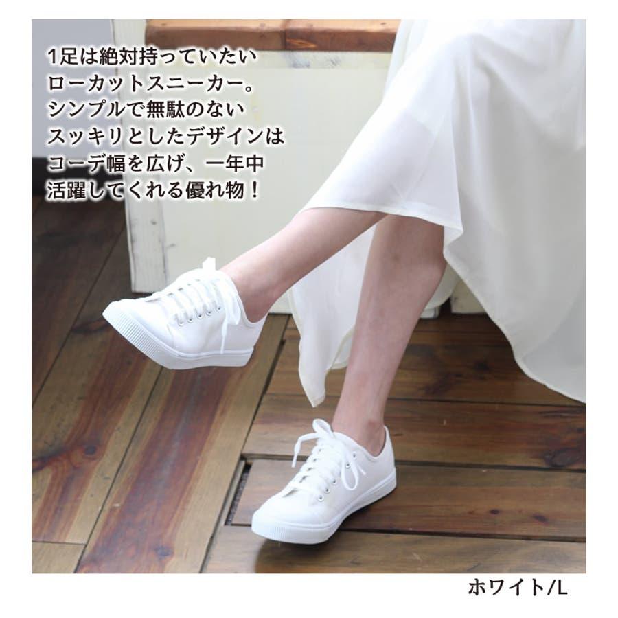 ローカットスニーカー ローカット スニーカー レディース 白 キャンバス 歩きやすい シューズ 靴 疲れない 韓国 韓国ファッション ホワイト カジュアル プチプラ 人気 小さいサイズ 大きいサイズ くつ クツ 運動靴 シンプル 大人カジュアル  5
