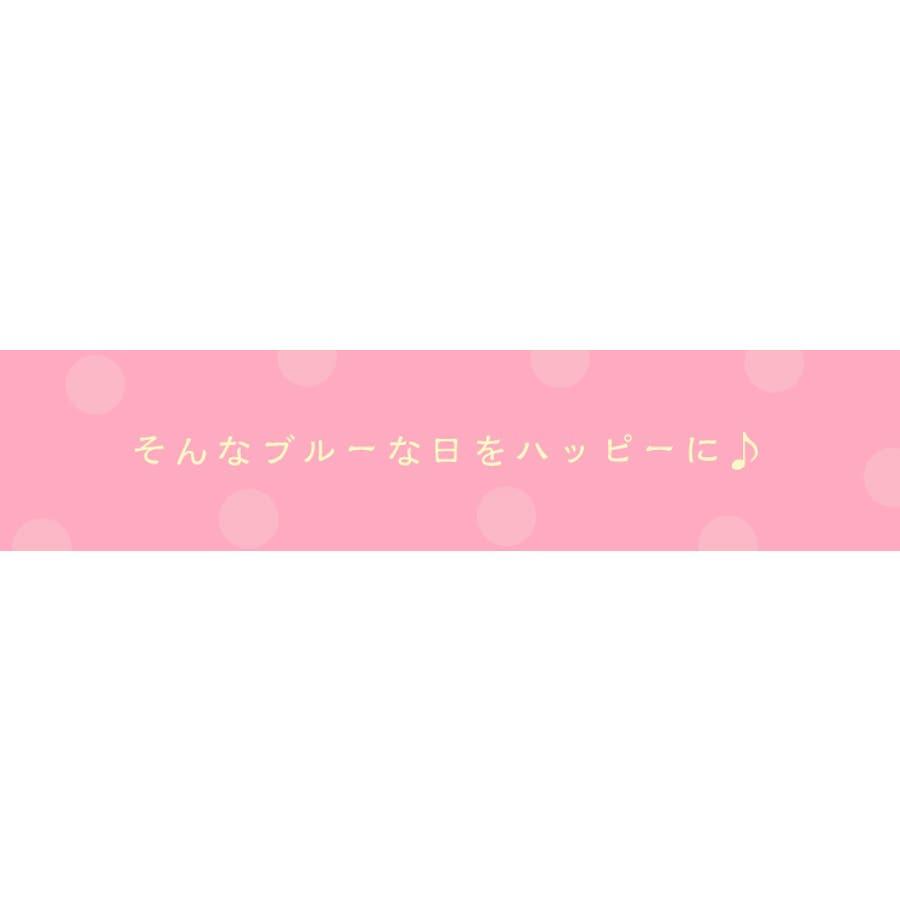 ジャコンヌ ポケット付き サニタリーショーツ3枚セット【昼用・羽根付対応】『M〜LL』 3