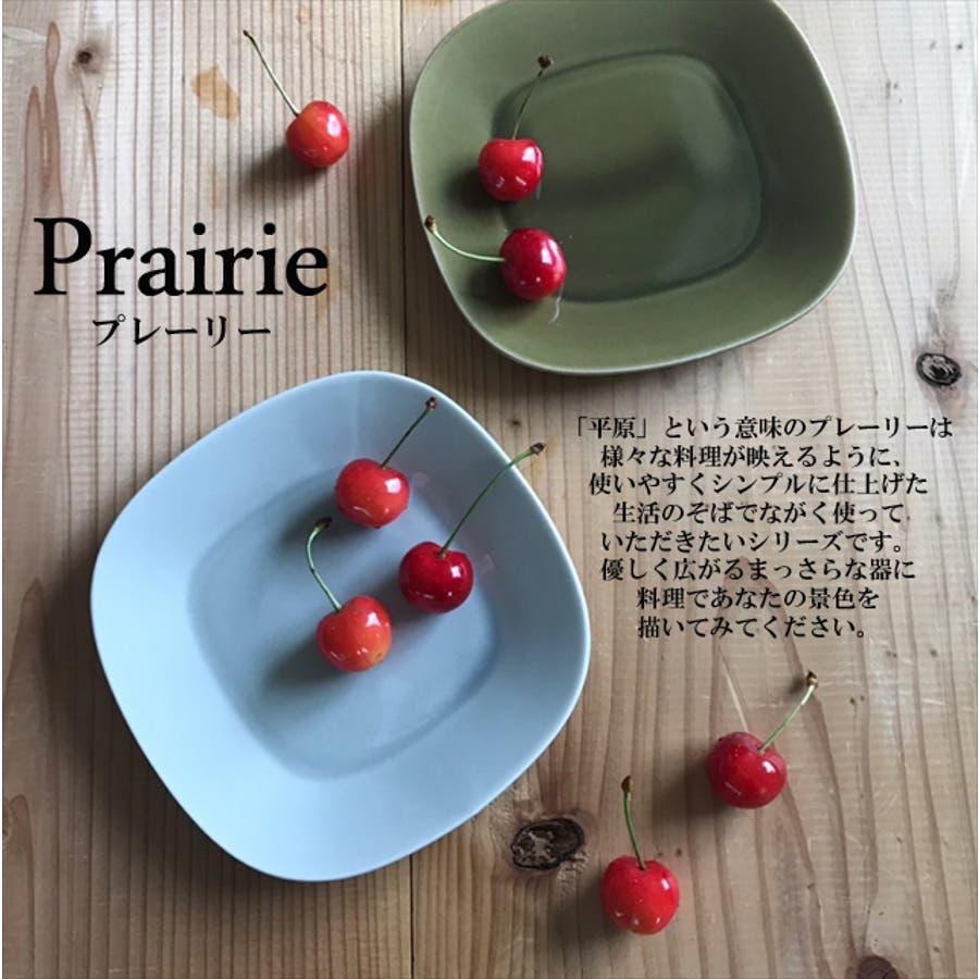 プレーリー プレート L 21.5cm 620g マスタード オレンジ お皿 パスタ皿 カレー皿 サラダ皿 食器 陶器 日本製 美濃焼小田陶器 みずなみ焼 カフェ おしゃれ かわいい 北欧 北欧風 インスタ映え 食洗器対応 7