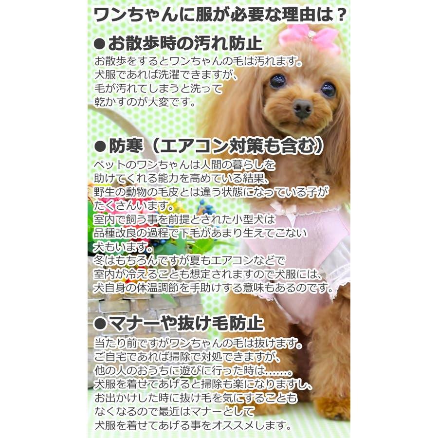 犬 服 犬服 8