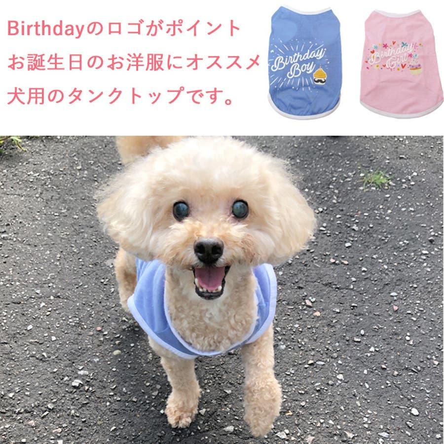 犬 服 犬服 犬の服 タンクトップ お誕生日 男の子 女の子 ドッグウェア 2