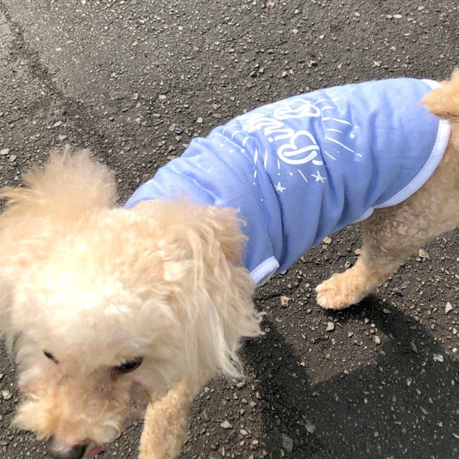 犬 服 犬服 犬の服 タンクトップ お誕生日 男の子 女の子 ドッグウェア 4