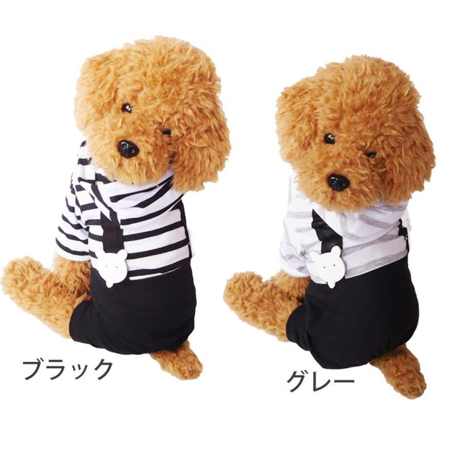 犬 服 犬服 4