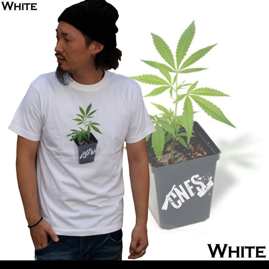 FLOWERPOTTEE フラワーポット柄半袖Tシャツ アメカジ 2
