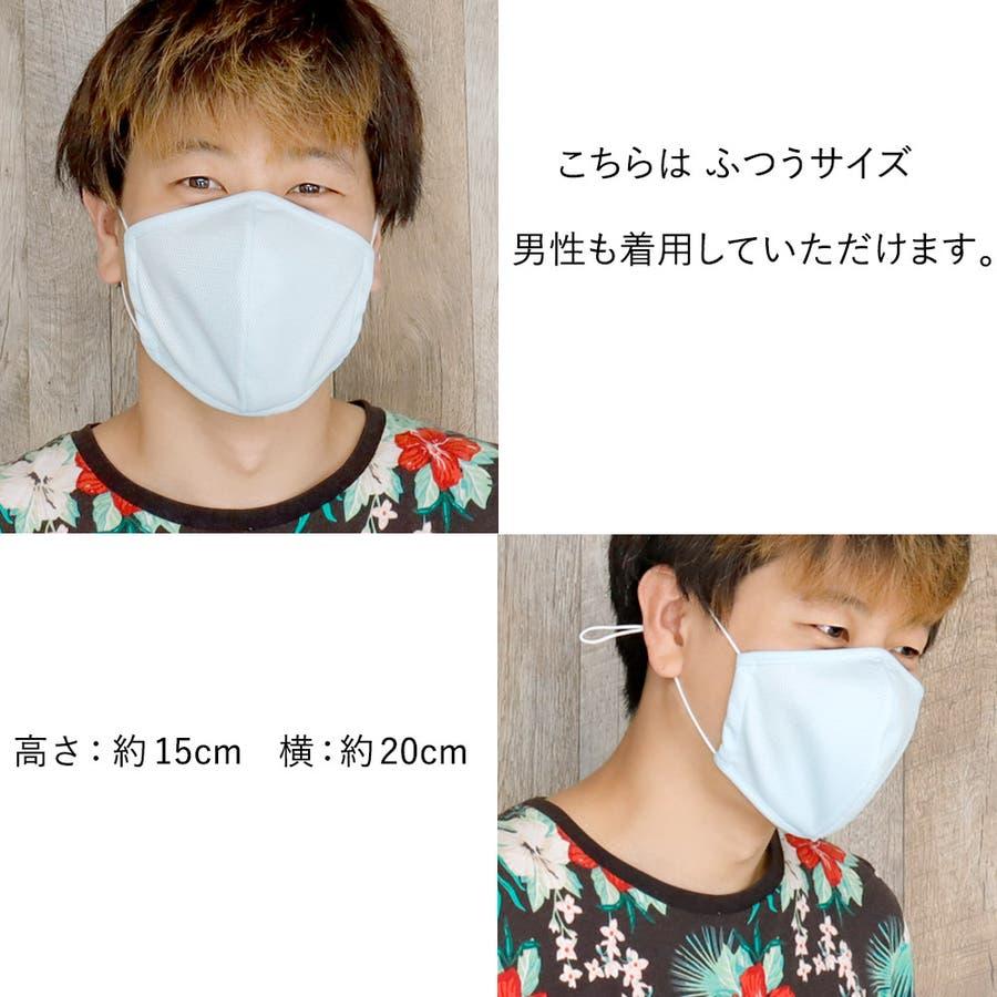 布マスク 大人マスク 立体 日本製 メッシュ 大人 小さいサイズ 都知事 アジャスター付 9