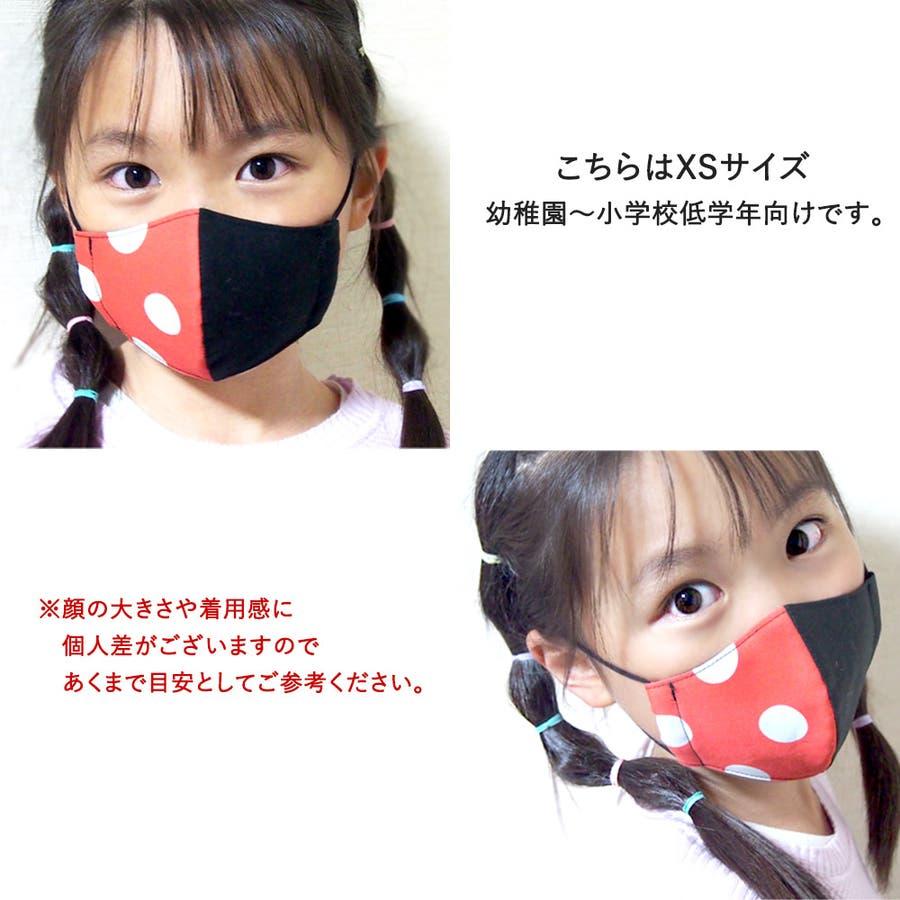子供マスク 立体 ゼブラ 5