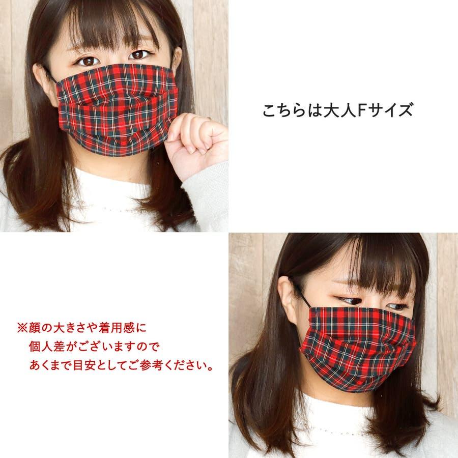 布マスク 大人マスク プリーツ 5