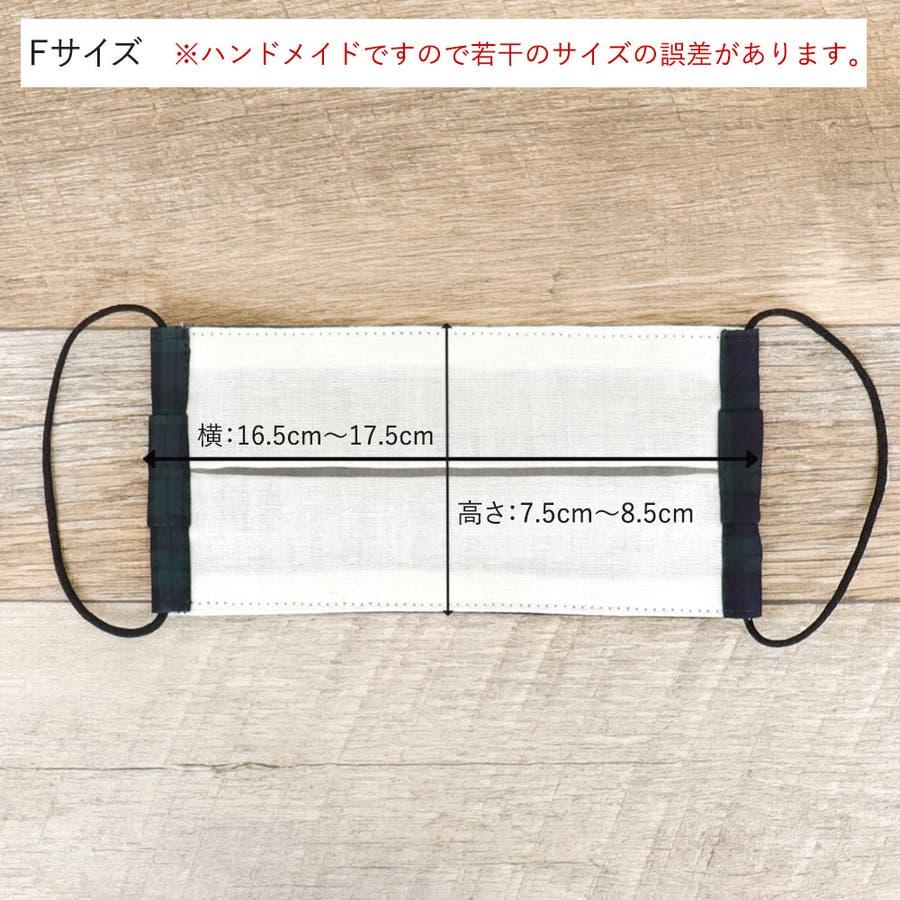 布マスク 大人マスク プリーツ 6