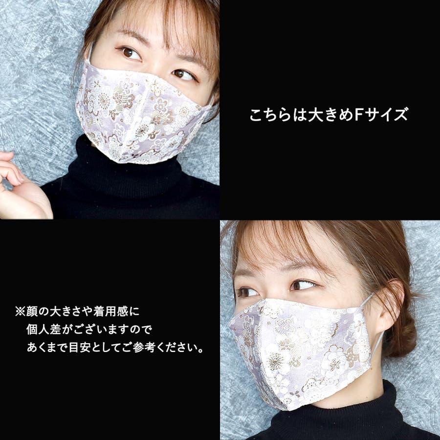 布マスク 大人マスク マスク 5
