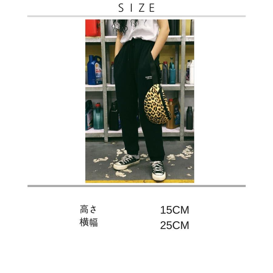 レオパード柄 ウエストポーチ 韓国 ファッション 秋 カジュアル ボディバッグ 夏 シンプル きれいめ 大人 斜め掛け 小さ目ボディバッグ 2