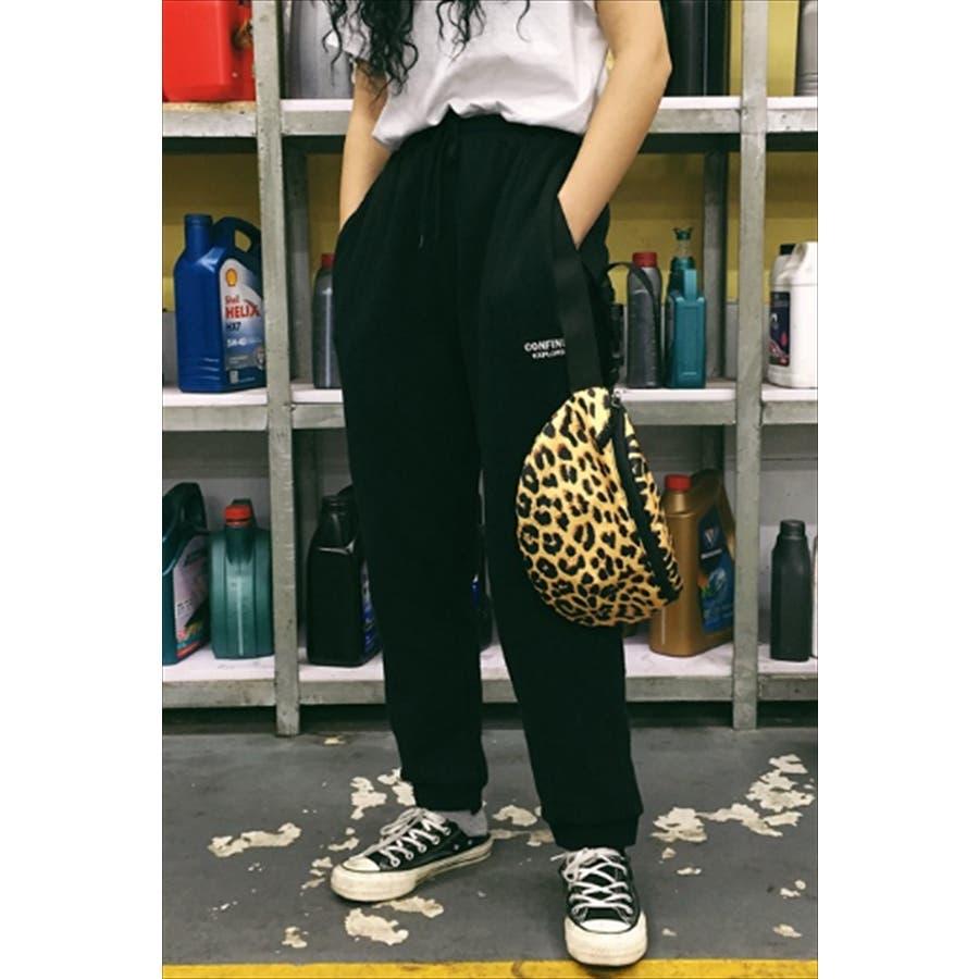 レオパード柄 ウエストポーチ 韓国 ファッション 秋 カジュアル ボディバッグ 夏 シンプル きれいめ 大人 斜め掛け 小さ目ボディバッグ 3