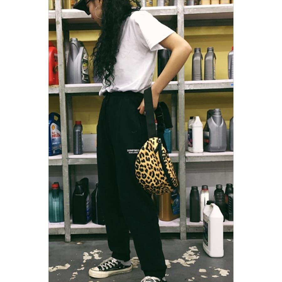 レオパード柄 ウエストポーチ 韓国 ファッション 秋 カジュアル ボディバッグ 夏 シンプル きれいめ 大人 斜め掛け 小さ目ボディバッグ 4