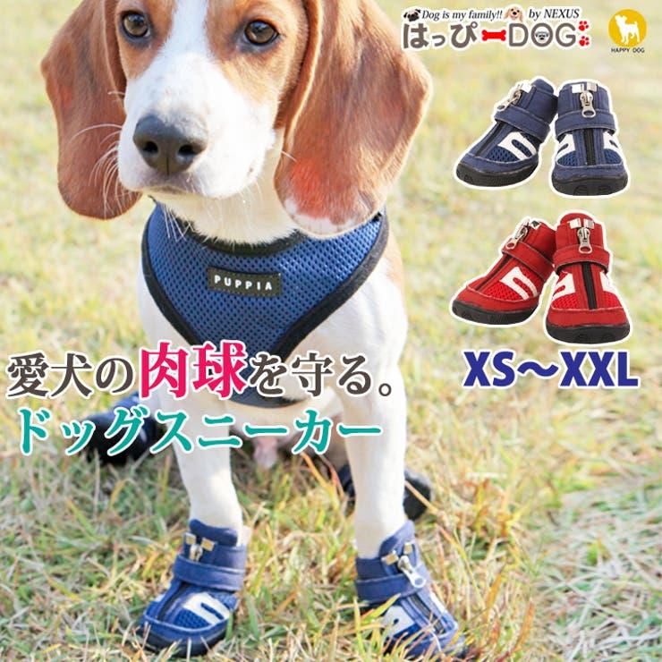 犬 靴 犬靴   K-city   詳細画像1