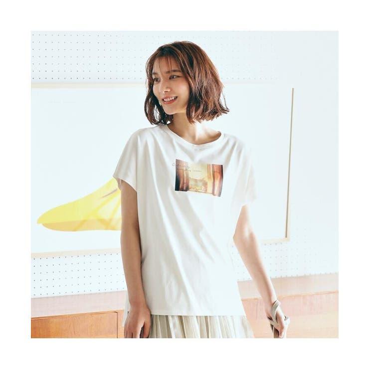 【S-3L】【抗菌防臭】ギザフレンチスリーブ転写Tシャツ | grove | 詳細画像1